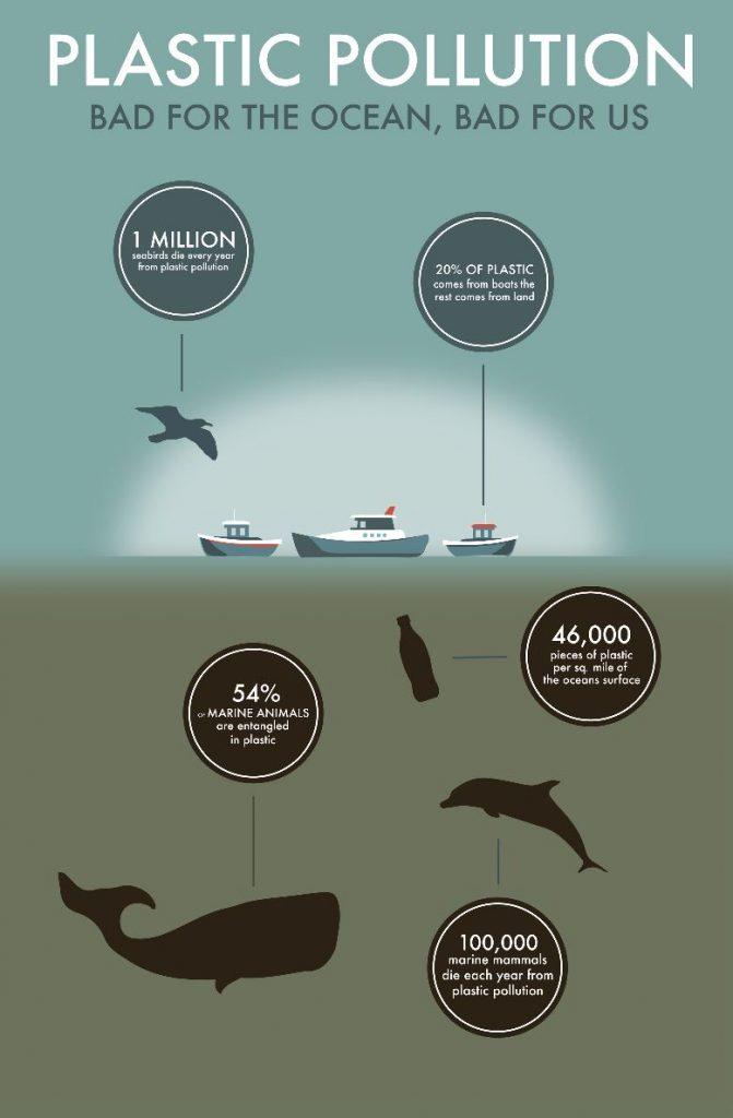 infographie plastic pollution par Jessica Ferguson